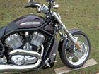 Photo of a 2005 Harley-Davidson® VRSCB V-Rod®
