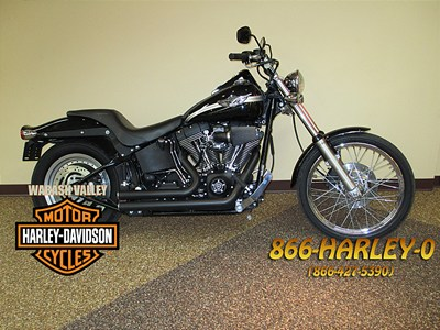 Photo of a 2003 Harley-Davidson® FXSTB/I Softail® Night Train®