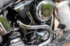Photo of a 1994 Harley-Davidson® FLSTN Heritage Softail® Nostalgia