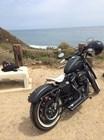 Used 2013 Harley-Davidson® Sportster® Iron 883™