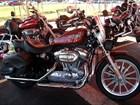 Used 2009 Harley-Davidson® Sportster® 883 Low